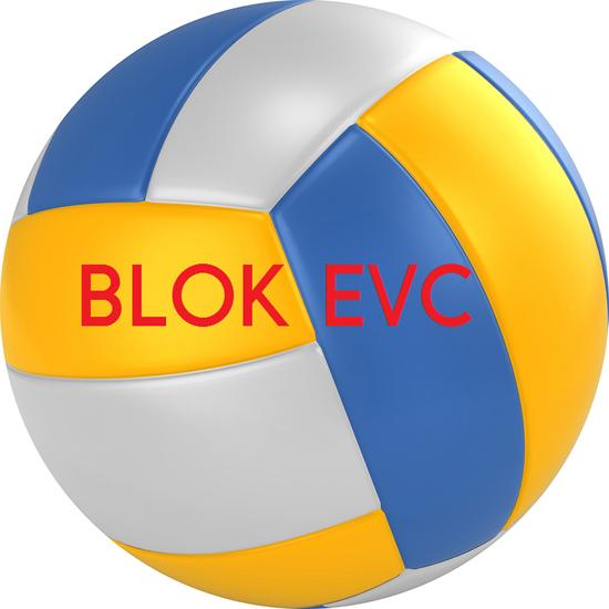 Vijf mini-teams van volleybalvereniging Blok EVC kampioen!