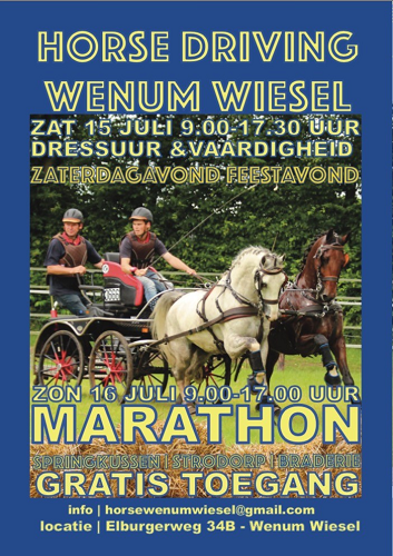 Horse Driving Wenum/Wiesel