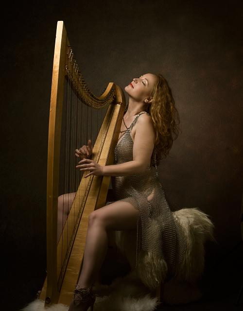 Exclusief harpconcert met After Music borrel op kasteel Cannenburch