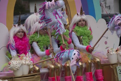 Carnavalsoptocht in Vaassen Deel 2