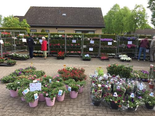 Bloemenmarkt (Muziekvereniging Prins Bernhard) Emst