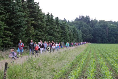 Avondwandelvierdaagse in Vaassen