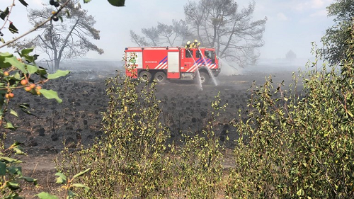 Verdachte opgepakt voor grote brand De Hoge Veluwe