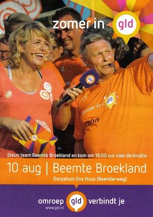 Zomer in Gelderland Beemte Broekland