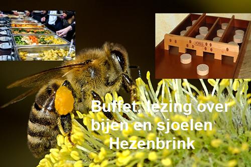 Buffet, Lezing over bijen tijdens koffie-inloop en Sjoelen in de Hezebrink Emst