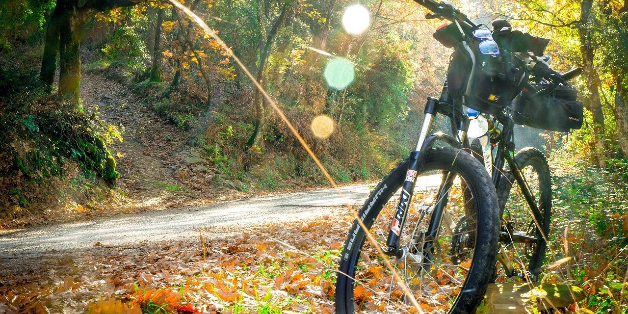 Mountainbikeroutes in Epe