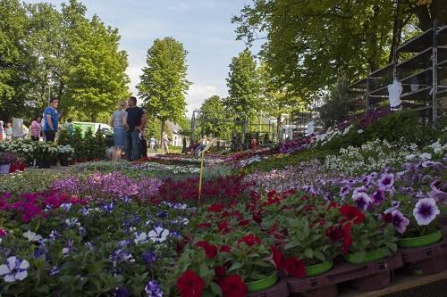 Bloemen- en Tuinmarkt tegenover kasteel Cannenburgh