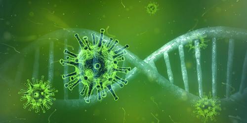 Informatie over het coronavirus