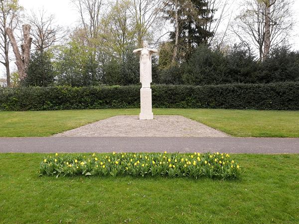 Freedom Flame tulpen staan volop in bloei
