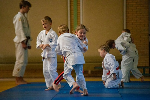 Judo in de Klimtuin Epe