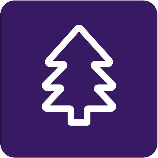 Circulus-Berkel zamelt kerstbomen in