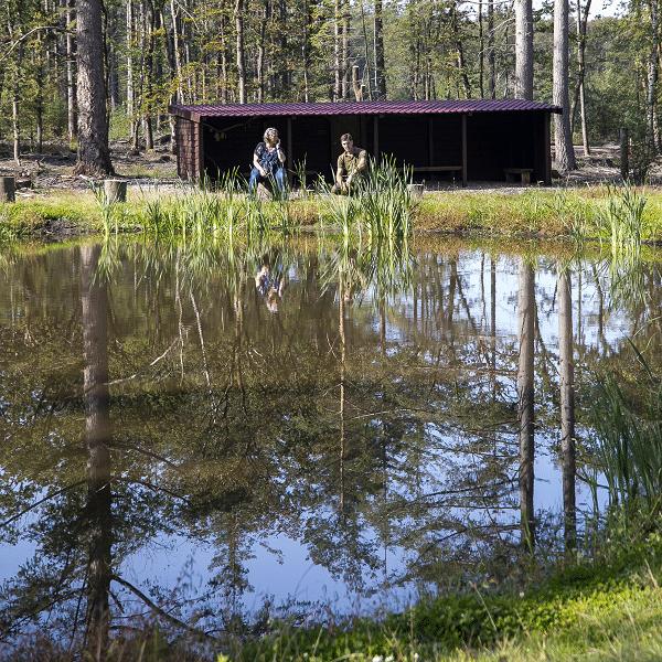 Zomerrondleidingen Natuurbegraafplaats Elspeterbos